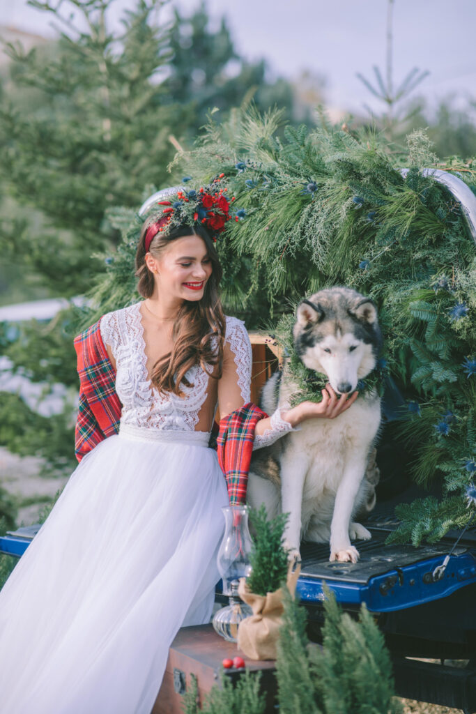 Bride on the pickup truck with a Huskey dog